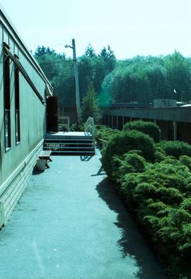 Old Surrey Campus: 354-19