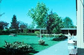 Old Surrey Campus: 354-13